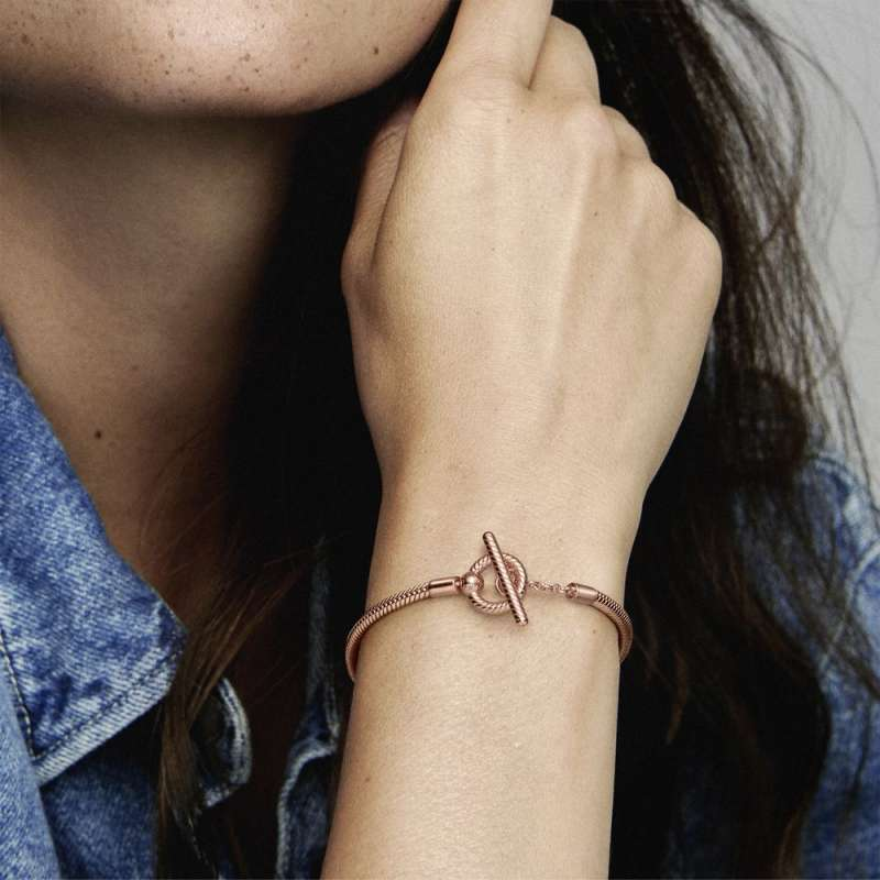 Pandora Moments белегзија со змиска плетка и Т-плочка