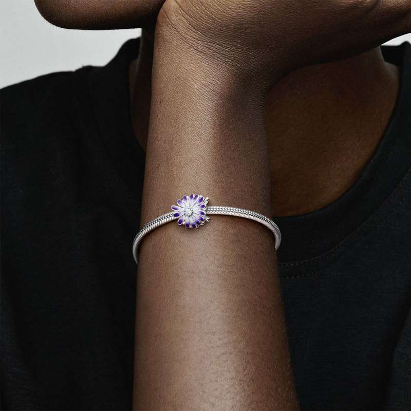 Приврзок Виолетова бела рада